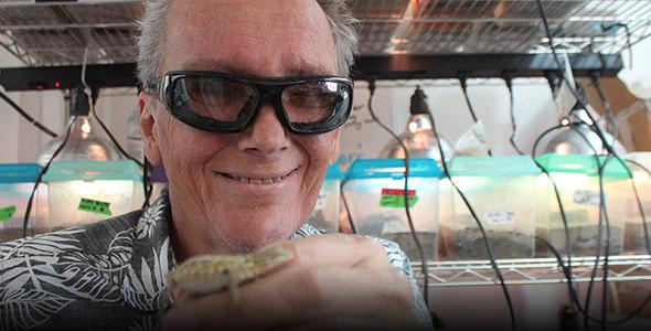 Biologist Barry Sinervo holds lizard
