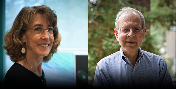 Two professors elected to the NAS