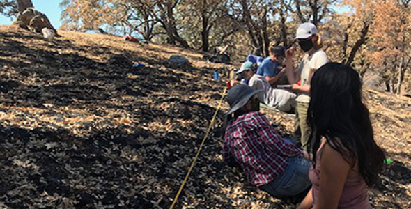 Hydrologist Margaret Zimmer's research team performed a post-fire assessment of their research site at the Blue Oak Ranch Reserve.