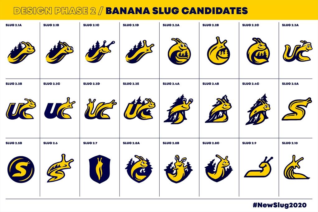 Banana Slug concept candidates