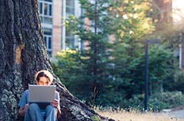 Student working under a redwood tree on campus